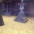 灯籠と銀杏の枯れ葉